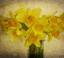 Spring Delight by maureen bracewell