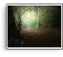 Autumn Walk - 1st Edition Canvas Print
