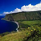 View On Top(Hawaii) by saseoche