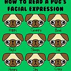 The many facial expressions of a pug by hellohappy