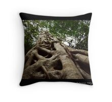 KNOTTED NATURE strangler fig (Ficus sp.) Throw Pillow