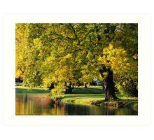 PARK TREE ORTON Art Print