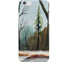 The Swamps Edge iPhone Case/Skin