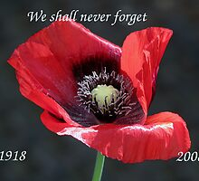 Remembrance Day 1918 - 2008 by Sharon Perrett