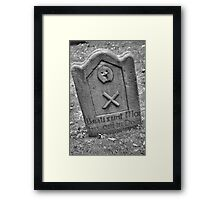 Remarkable Survival Framed Print