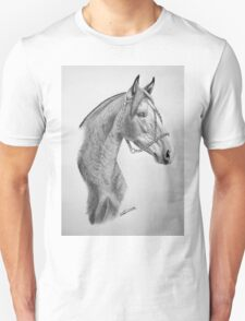 """""""Argentinian Beauty"""" - Criollo mare T-Shirt"""