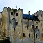 Donjon de Niort by Pamela Jayne Smith