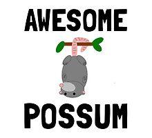 Awesome Possum by AmazingMart