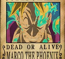 Wanted Marco - One Piece by Amynovic