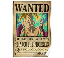 Wanted Marco - One Piece Poster