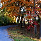 Autumn Road by Ginger  Barritt
