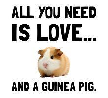 Love And A Guinea Pig by AmazingMart