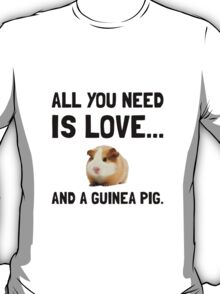 Love And A Guinea Pig T-Shirt