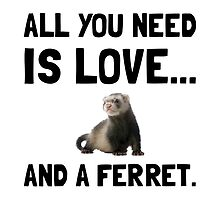 Love And A Ferret by AmazingMart