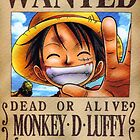 Wanted Luffy - One Piece by Amynovic