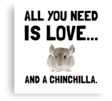 Love And A Chinchilla Canvas Print