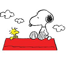 Snoopy and Woodstock Love Photographic Print