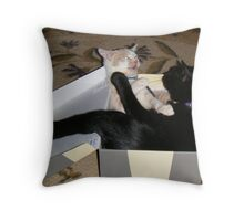 Box Fighting Matilda and Wild Bill Hickock Throw Pillow