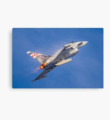 RAF 29 Squadron Special Canvas Print