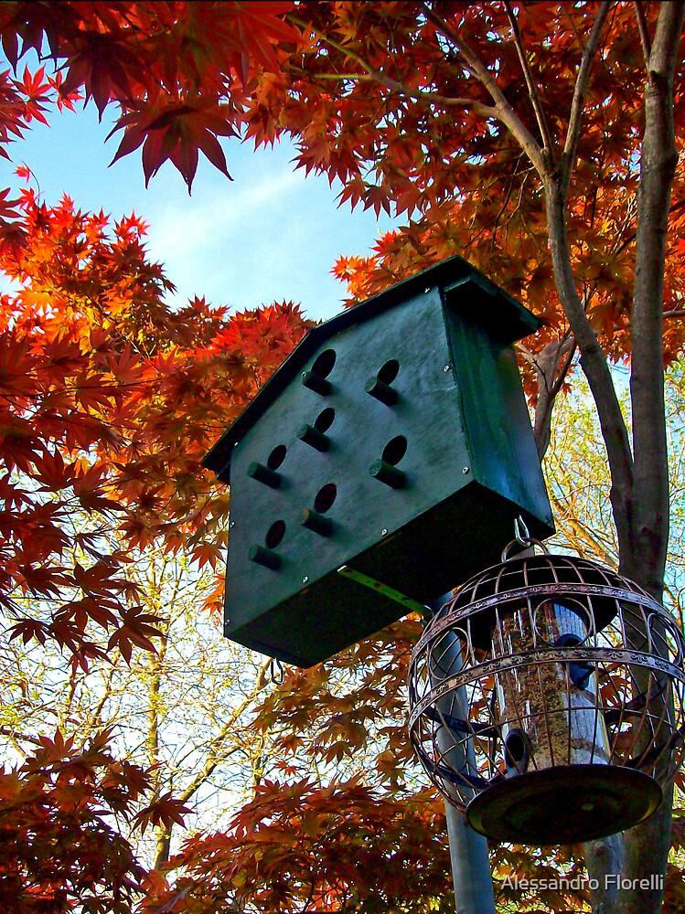 Birds Apartment by Alessandro Florelli