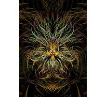 Fractal 18 Photographic Print