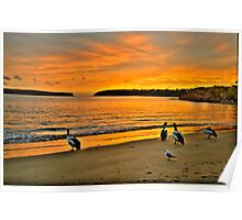 Morning Stroll - Balmoral Beach - The HDR Series Poster
