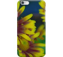 Marigold Mania iPhone Case/Skin