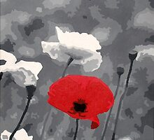 One Red Poppy by Samitha Hess Edwards