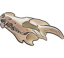 Natural dragon skull by MageCap