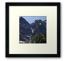 Avalanche Circle Of Trees  Framed Print
