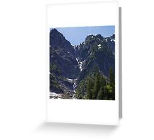 Avalanche Circle Of Trees  Greeting Card