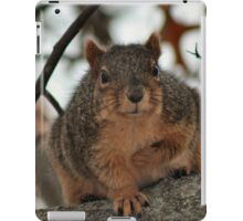 I promise I'll be nice if you let me warm up in your pocket! iPad Case/Skin