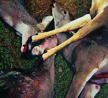 Deer John by stevebohnstedt