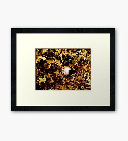 Gilded Framed Print