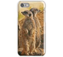 Compare the Meerkats iPhone Case/Skin