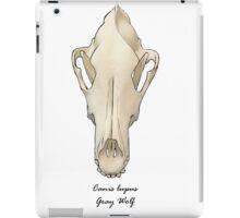 Gray Wolf skull iPad Case/Skin
