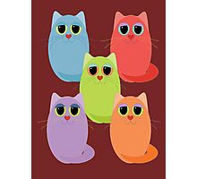 CAT FIVE POSE Photographic Print