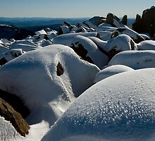 Winter Summit, Mt Ossa, Tasmania by tasadam