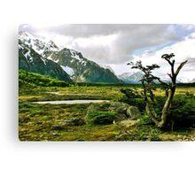 Patagonian Landscape Canvas Print
