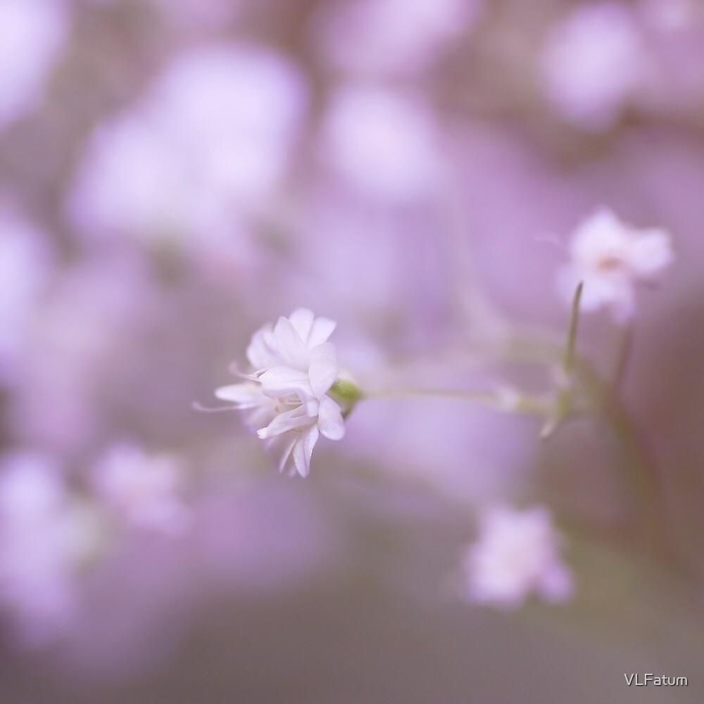 Whisper Softly by VLFatum
