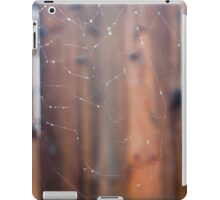 Raindrops on Spiderweb iPad Case/Skin