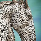 Duke ~ Kelpie Horse  by M.S. Photography/Art