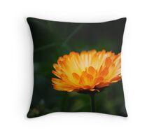 Orange Wildflower... Throw Pillow