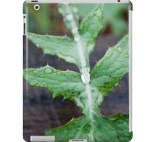 Raindrops on a weed iPad Case/Skin