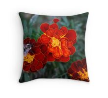 A Fall Feast Of Marigolds...  Throw Pillow