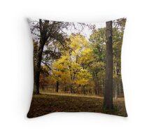 Natures colors Throw Pillow