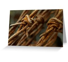Barbed wire macro Greeting Card