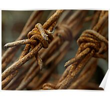 Barbed wire macro Poster