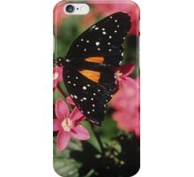 Janius Patch Butterfly iPhone Case/Skin
