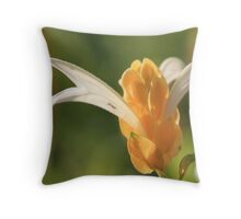 did you ever look behind =) Throw Pillow